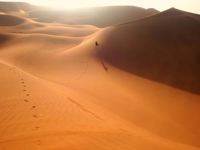 running through vast Sahara, 2017