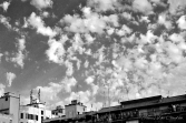 Photo37_37