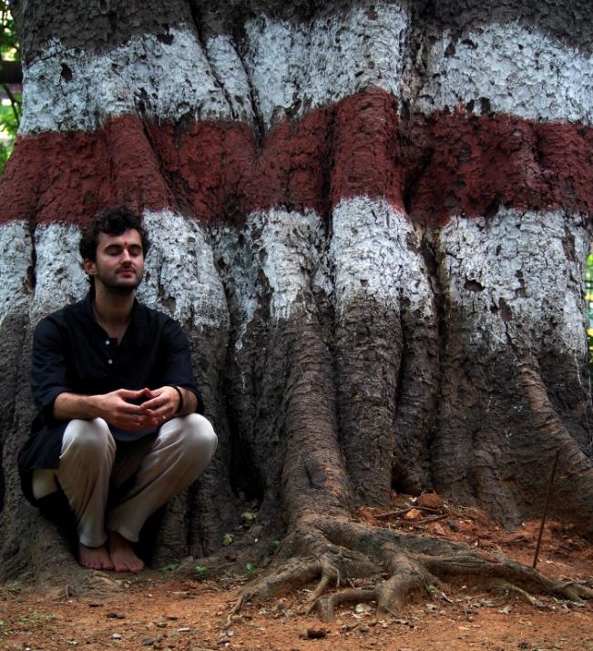 Sacred Banyan India, 2015
