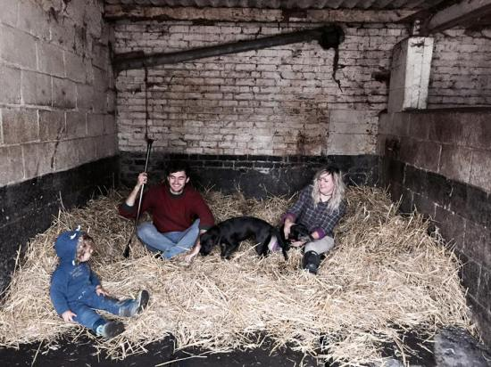 The Good Life - rolling around in the straw after mucking out the stables!