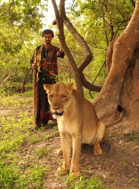 Masai the Lioness, Senegal Africa